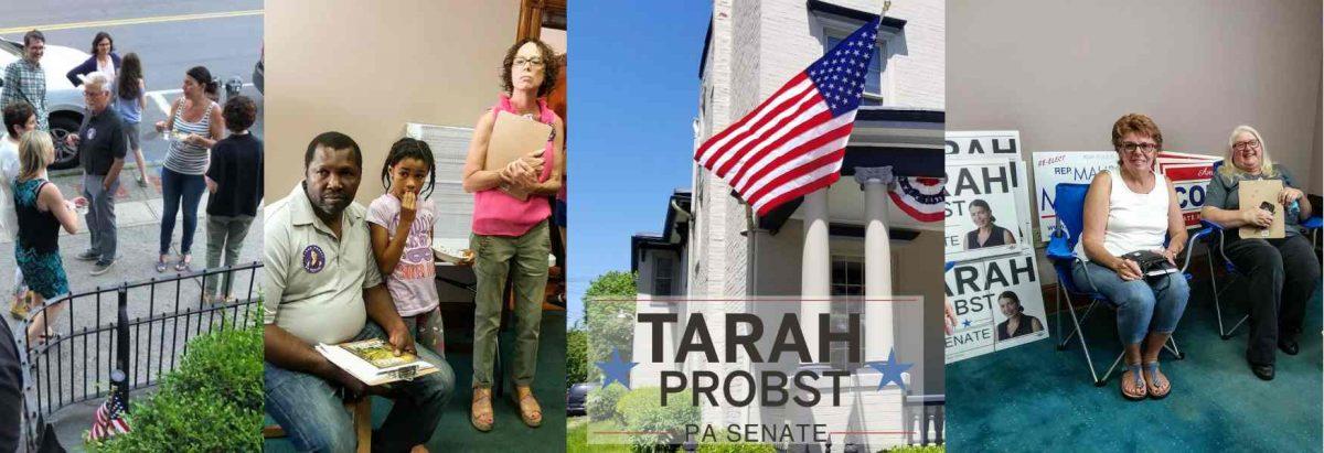 Volunteer for Tarah Probst for Senate